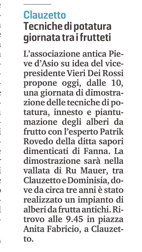 Messaggero Veneto 15 febbraio 2020