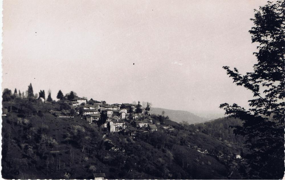 Dominisia, anni '50
